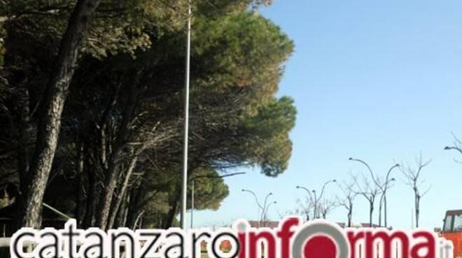 public/img/quartieri/2010611530273017_1.jpg