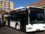autobus multiservizi