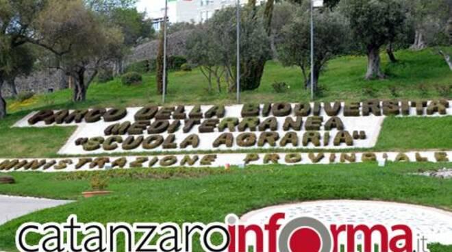 public/img/quartieri/201141293353354_1.jpg