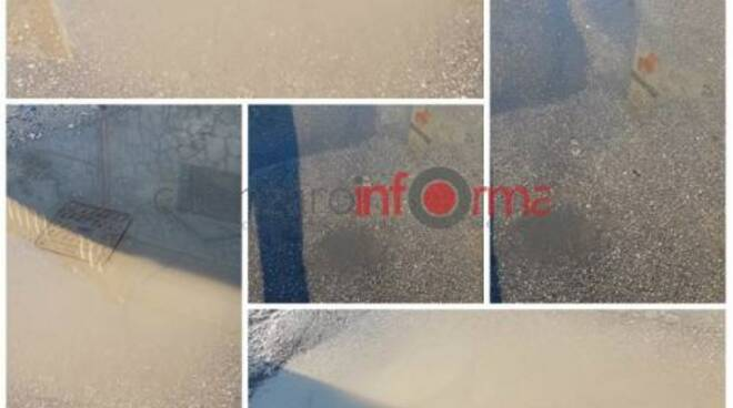 public/img/varie/tobinoviapiemonte20191023143051700_1.jpg