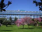 ospedale lamezia fiorito