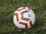 pallone sintetico