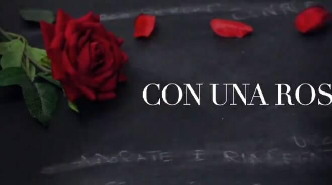 con una rosa