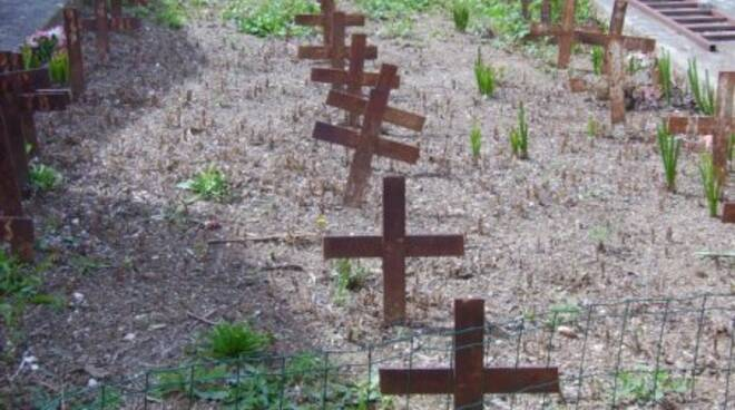 cimitero nicastro