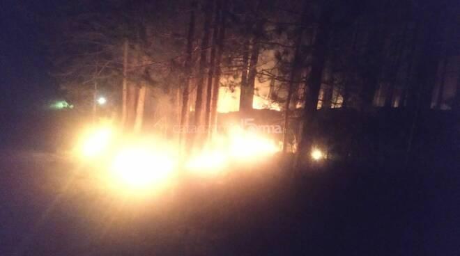Incendio a sorbo san Basile distrutti castagneti