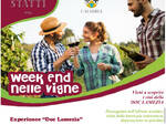 fine settimana vigne statti
