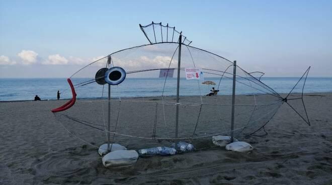 pesce plastica falerna