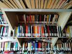 biblioteca crotone
