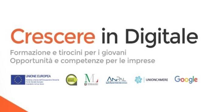 crescere digitale
