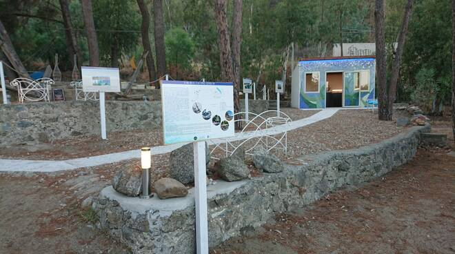 mumak museo