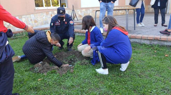 progetto plastic free presila carabinieri biodiversità
